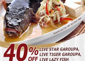 Diskon 40% Live Fish