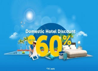 Domestic Hotel Up To 60%