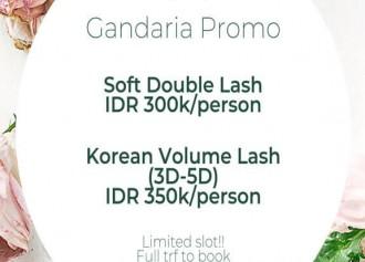 Special Price Lash